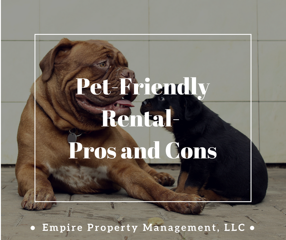 Pet-Friendly Rentals- Pros and Cons